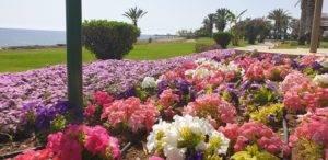 Paphos Hotel Route - hier kann man gut spazieren gehen