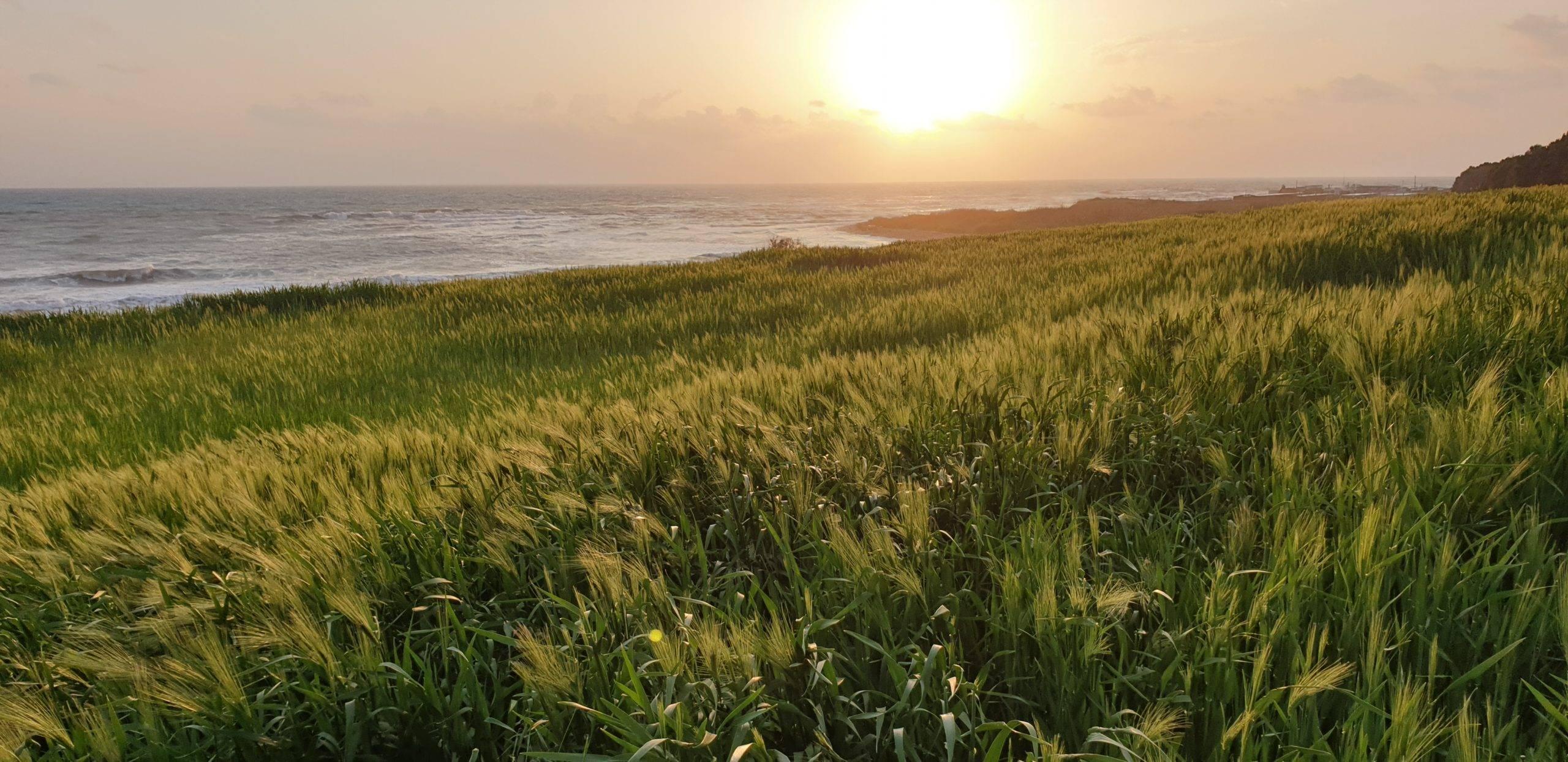 Zypern in Februar - so sieht die Insel aus
