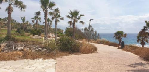 Promenade in Paphos