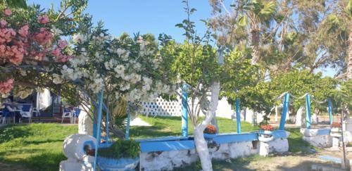 RIKOS Beach Frontseite