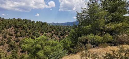 Trodos Zypern - faszinierende Berglandschaft 25
