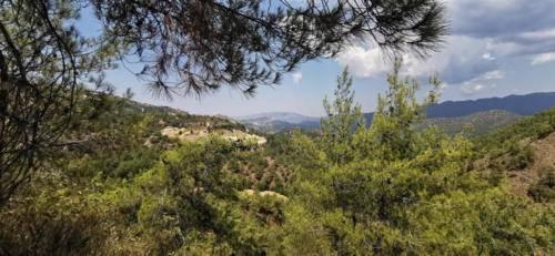 Trodos Zypern - faszinierende Berglandschaft 27