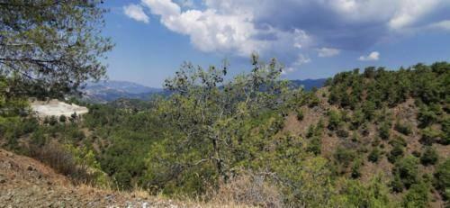 Trodos Zypern - faszinierende Berglandschaft 28
