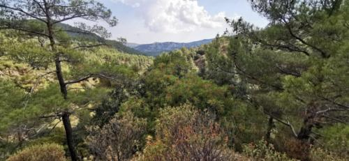 Trodos Zypern - faszinierende Berglandschaft 31