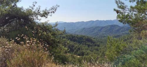 Trodos Zypern - faszinierende Berglandschaft 07