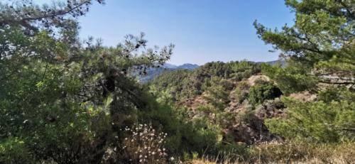 Trodos Zypern - faszinierende Berglandschaft 08