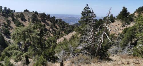 Trodos Zypern - faszinierende Berglandschaft 05