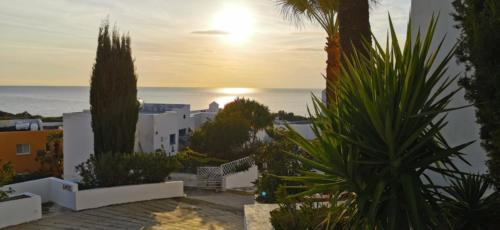 Leben genießen bei IKARIA VILLAGE in Chloraka - Paphos.