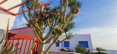 Wunderschön Wohnen auf Zypern - Ikaria Village.