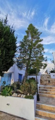 Ikaria Village unter den Blauen Himmel in Paphos