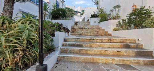 Treppenstieg bei Ikaria Village in der Nähe von Paphos