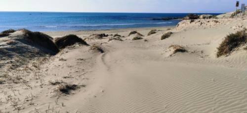 Zypern Wüste im Herbst 28