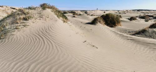 Zypern Wüste im Herbst 24