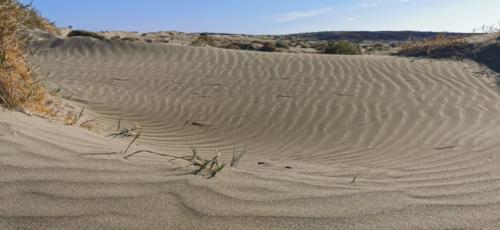 Zypern Wüste im Herbst 22