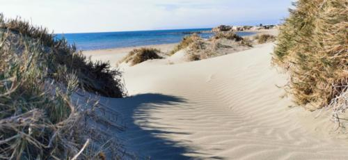 Zypern Wüste im Herbst 20