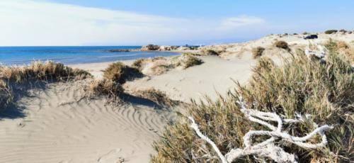 Zypern Wüste im Herbst 21