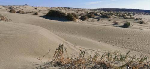 Zypern Wüste im Herbst 18