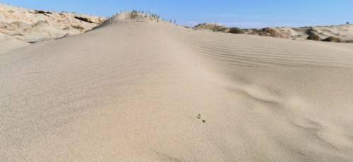 Zypern Wüste im Herbst 17