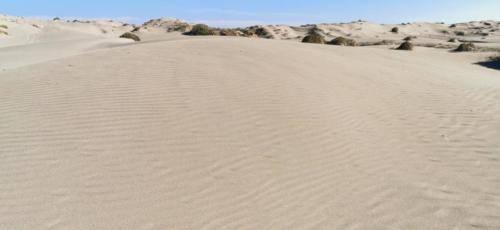 Zypern Wüste im Herbst 16