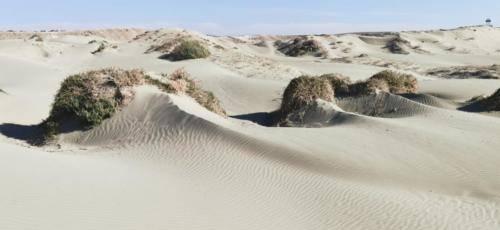 Zypern Wüste im Herbst 15