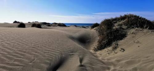 Zypern Wüste im Herbst 14