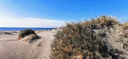 Zypern Wüste im Herbst 12
