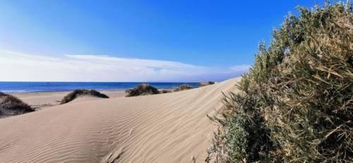 Zypern Wüste im Herbst 08