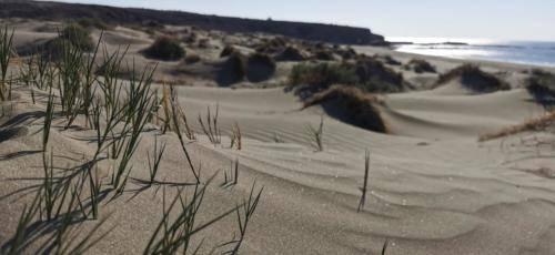 Zypern Wüste im Herbst 06