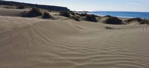 Zypern Wüste im Herbst 04
