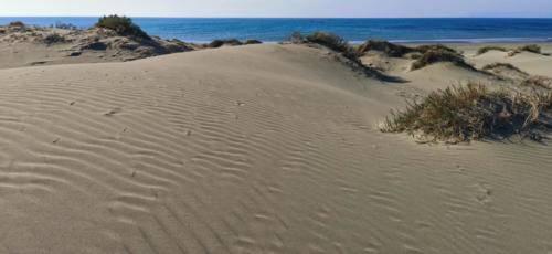 Zypern Wüste im Herbst 03